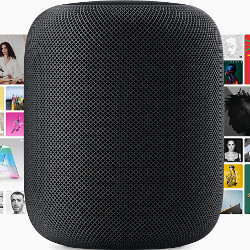Better keep it safe: Apple HomePod repair costs $279