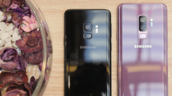 Poll results: a good amount love the compact S9, but the bigger S9+ slams it