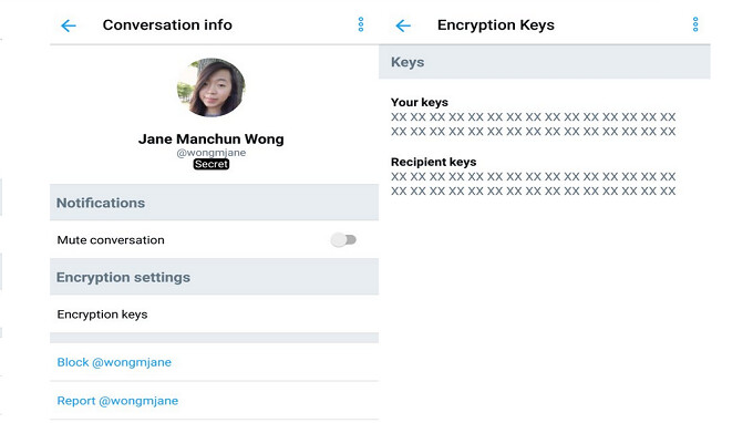Twitter has secret encryption feature on its Android app?
