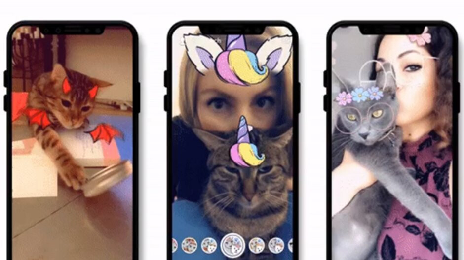 Snapchat for Android and iOS update adds Lenses for ... cats