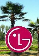 Verizon says aloha to the LG Fathom & Aloha in May?