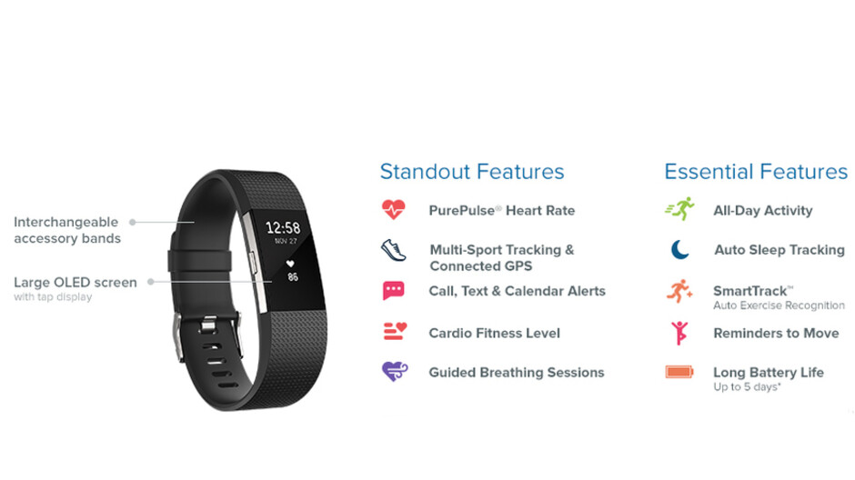 Heart Rate Large Teal Fitness Wristband Fitbit Charge 2 Activity Tracker