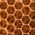 Honeycomb now due for February launch as Android 2.4
