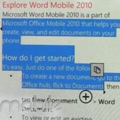 Microsoft urges users to wait for the official WP7 NoDo update