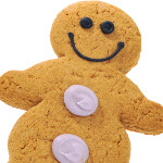 Gingerbread to be served this summer for the T-Mobile G2?