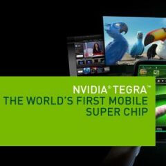 NVIDIA reports lost profits, despite the early success of its Tegra line