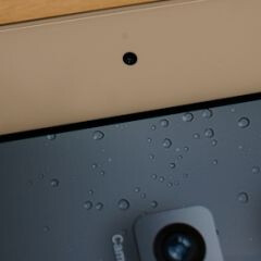 Flickr statistics suggest that iPad 2 owners rarely use the rear-facing camera
