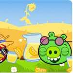 """Angry Birds """"Summer Pignic"""" will keep you from melting throughout the summer"""
