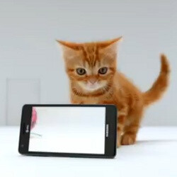 AT&T resorts to a cute kitten for Samsung Infuse 4G ads: