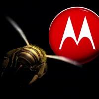 Motorola has shipped 100,000 Xoom tablets in Q3
