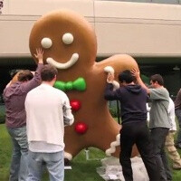 Gingerbread is now the dominant Android version