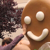 Gingerbread now on more than half of Android devices