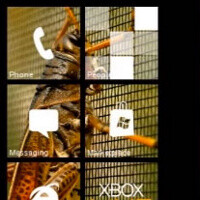 Themes for Windows Phone jazzes up Live Tiles with pictures