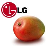 Is the LG E740 the LG Fantasy?; model could be the manufacturer's initial Windows Phone 7.5 model