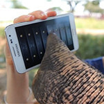 An elephant uses the Galaxy Note in Samsung's latest video