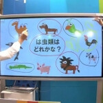 New plasma display by Panasonic allows four people to draw at same time