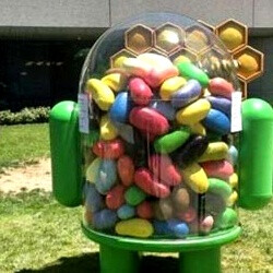 Android Jelly Bean is coming: cast your wish for new features here