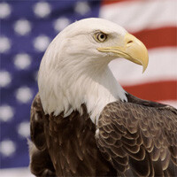 5 ways to get patriotic with your mobile device on July 4th