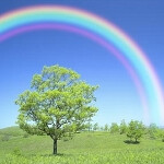 Accessories for Samsung GALAXY Note II make rainbow like appearance at IFA
