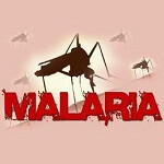 Fighting malaria in Cambodia with Google Earth and SMS