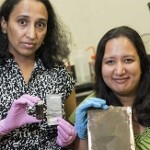 Crushed silicon can create a smartphone battery that lasts three times longer than current cells