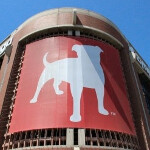 Zynga acquires game studio November Software to expand its mobile midcore offerings