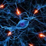 Google purchases neural network startup to make Skynet smarter