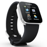 Will smartwatches be the new tech mania of 2013?
