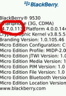 New leaked OS update for BlackBerry Storm 9530 and Curve 8900