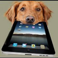 Can you teach your old dog new tricks on an Apple iPad?