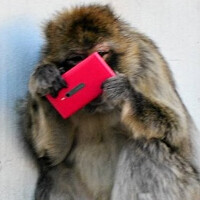 Monkeying around with the Nokia Lumia 800