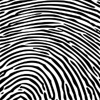 Leaked photo shows fingerprint scanner on Apple iPhone 5S