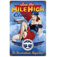 Wingman: the app that will help you score a seat on the mile-high club
