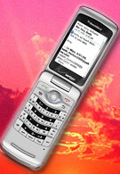 Verizon to sell the BlackBerry Pearl Flip 8230 on June 19