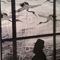 Photos taken with Nokia Lumia 920 and 1020 went on exhibit in New York City gallery