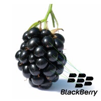 BlackBerry buys stake in medical company NantHealth, integrates BBM in healthcare systems