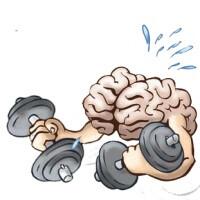 Is omega 3 good for brain development