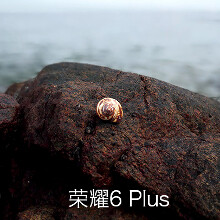 Dual-camera Honor 6 Plus photo samples get compared to Galaxy S5 and iPhone 6 Plus