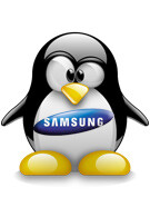Samsung working on own operating system?