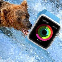 The Apple Watch was tested in gyms and climate-controlled environments simulating Alaska and Dubai