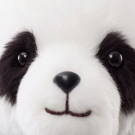 Google Panda puts Google Now in your arms, literally