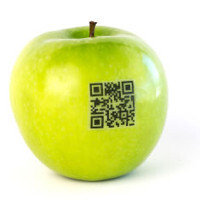 How to scan a QR code on your iPhone