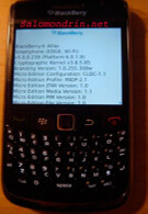 BlackBerry Atlas sits in front of the camera