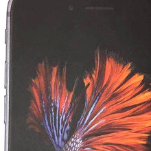 Real clear iPhone 6s box appears, puts the new fish wallpaper front and center