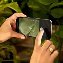 Google Nexus 5X full specs leak out: all day battery life,