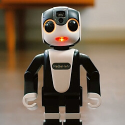 The Sharp RoBoHoN is a bipedal robot that's also a smartphone