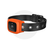 Motorola's smart dog collar to be unveiled at MWC along with other connected wearables