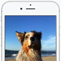 Google Photos for iOS updated with support for Live Photos and Split View