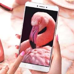 "Xiaomi Mi Max will offer ""full-day"" battery life"