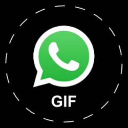 WhatsApp getting GIF support soon